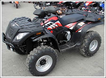 Фотография ATV Muddy 300 (2010)