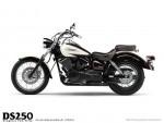 Мотоцикл DS250 Drag Star Two Fifty: Эксплуатация, руководство, цены, стоимость и расход топлива