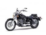 Мотоцикл XVS 250 Dragstar 2001: Эксплуатация, руководство, цены, стоимость и расход топлива