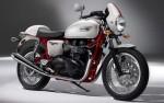 Мотоцикл Thruxton SE (2010): Эксплуатация, руководство, цены, стоимость и расход топлива
