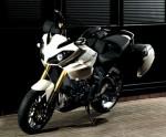 Мотоцикл Tiger 1050 (2007): Эксплуатация, руководство, цены, стоимость и расход топлива