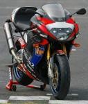 Мотоцикл RSV1000 Mille R Haga (2001): Эксплуатация, руководство, цены, стоимость и расход топлива