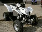Мотоцикл Cobra 320 (2008): Эксплуатация, руководство, цены, стоимость и расход топлива