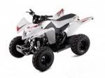 Мотоцикл Cobra 50 (2009): Эксплуатация, руководство, цены, стоимость и расход топлива