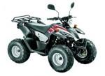 Мотоцикл DS 100 (2009): Эксплуатация, руководство, цены, стоимость и расход топлива