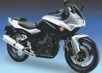 Мотоцикл GS 250 (2008): Эксплуатация, руководство, цены, стоимость и расход топлива