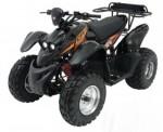 Мотоцикл ATV XT 50 (2009): Эксплуатация, руководство, цены, стоимость и расход топлива