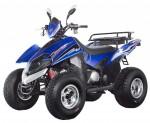 Мотоцикл ATV Dragon 250 (2009): Эксплуатация, руководство, цены, стоимость и расход топлива