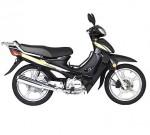 Мотоцикл CUB Partner 100 (2007): Эксплуатация, руководство, цены, стоимость и расход топлива