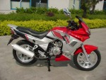 Мотоцикл XT125-18 (2010): Эксплуатация, руководство, цены, стоимость и расход топлива