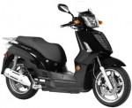 Информация по эксплуатации, максимальная скорость, расход топлива, фото и видео мотоциклов People S 250 (2010)