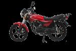 Информация по эксплуатации, максимальная скорость, расход топлива, фото и видео мотоциклов MG Prince (2013)