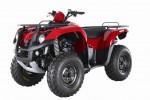 Мотоцикл QuadRaider 600 : Эксплуатация, руководство, цены, стоимость и расход топлива
